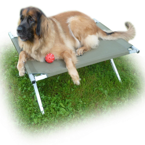 Раскладушка для собаки Брода 120 Хаки